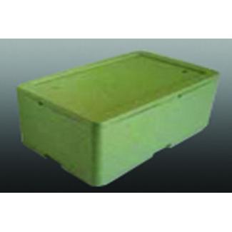 Scatola termica in polistirolo verde con coperchio, base rettangolare