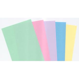 Risma di carta copytinta mixtenui da 160 gr/mq, in formato A4, in confezione da 100 pezzi